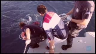 CADI - Refugiado (Prod Wirebeats) (VIDEOCLIP)