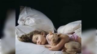 人与动物:一个少女童年的回忆