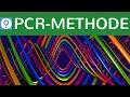 pcr-methode-vervielfaeltigung-dna/