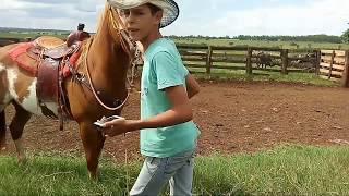 Desafios #2 🐴mete a roseta no cavalo para ele pular