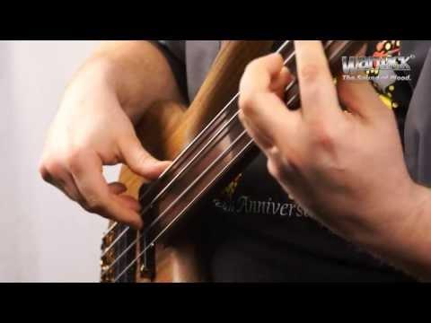 The Warwick Dolphin Pro I 4 string fretless