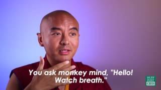 Méditation : comment entrainer votre Esprit Singe