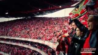 MÁGICO!! - Hino do Benfica - Benfica Olhanense (2013/2014)