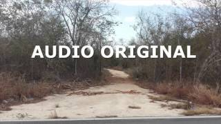 """236.-  Audio de los lamentos de la """"La llorona"""" captados en Tixkokob, Yuc., Mex."""