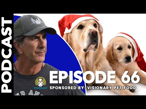 Christmas Spirit and Dogs - Episode 66
