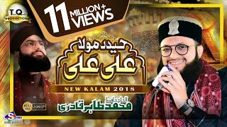 New Manqabat Maula Ali 2018 - Hafiz Tahir Qadri width=