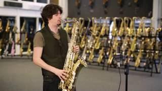Selmer USA La Vie TS250 Tenor Saxophone