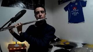 El oboe de Gabriel (La Misión) / Ennio Morricone / Flauta y Piano