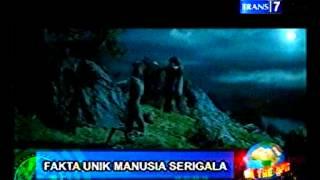 On The Spot   Fakta Unik Manusia Serigala