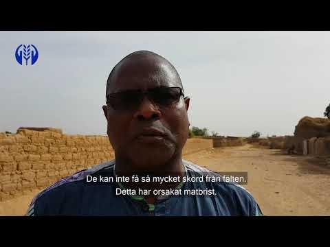Extrem torka i Mali och Burkina Faso - vi är på plats