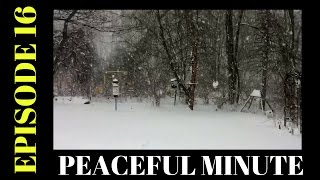 Peaceful Minute ~ Episode 16 ~ Slow-Motion Snow Storm Stella
