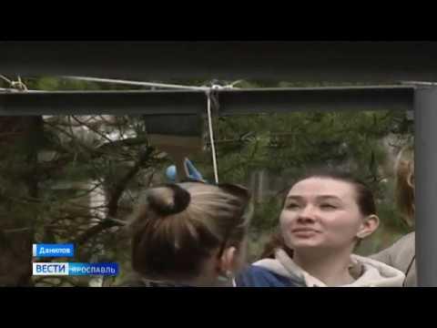Ярославские добровольцы решили привести дворы, где проживают ветераны ВОВ, в порядок