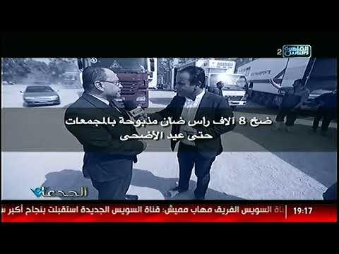 الجدعان | وصول  لحوم ضأن سودانية..خطة الدولة لتوفير السلع الأساسية .. زيارة لمدينة الإنتاج الداحنى