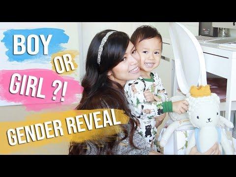 Pregnancy Vlog ♥ CUTE BABY GENDER REVEAL ♥ We're having a…