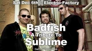 Badfish, a Tribute to Sublime, live at Electric Factory 12/6/14!