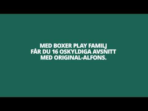 Boxer Play - Alfons