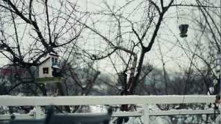 JakubStelzer - tsitra [instrumental]