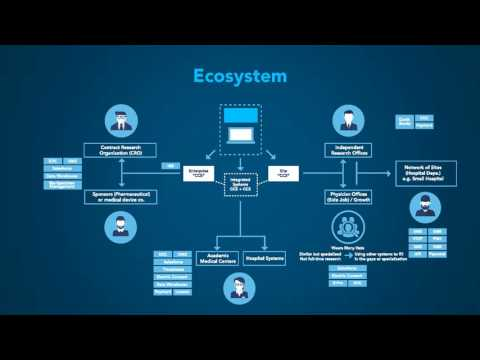 Ecosystem Mapping - Designing Experiences for Complex Domains