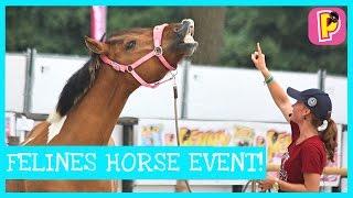 Feline en Marleys Horse Event