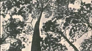 """Carlos do Carmo - """"Uma flor de verde pinho"""" (Manuel Alegre e José Niza)  1976"""