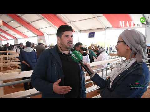 Video : Matin TV en direct du SIAM : L'ANOC mobilisée auprès des éleveurs d'ovins et de caprins