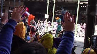 Mardi Gras 2019  (The Tramps!)