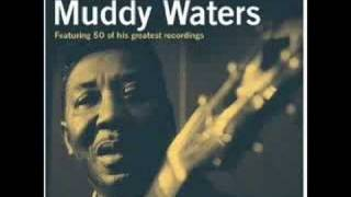 Muddy Waters - I'm Ready