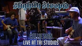 Collie Man - Slightly Stoopid (Live at Roberto's TRI Studios)
