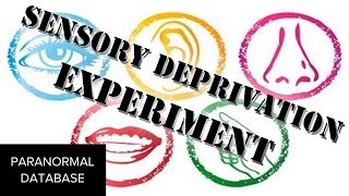 Sensory Deprivation Experiment