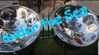 Under the Sea (steelpan cover) must watch!!!