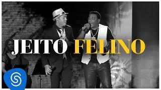 Raça Negra - Jeito Felino - Part. Belo (DVD Raça Negra & Amigos) [Video Oficial]