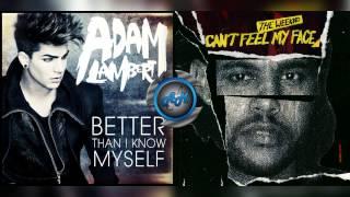 Adam Lambert Vs The Weeknd - Better than i know my face (Mashup)