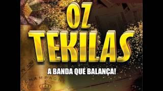 OZ TEKILAS VERÃO 2015 LANÇAMENTO - O PODER ESTÁ COM ELA