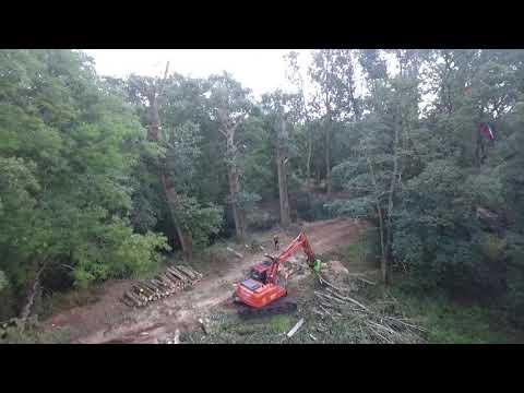 Renovatie natuurgebied Kampina, langs rivier De Beerze - Video 2