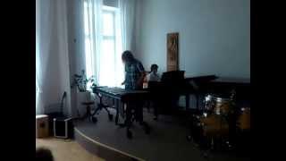 Yann Tiersen: L'autre Valse l'Amelie Vibraphone