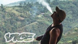 Kings of Cannabis (Full Length Documentary) width=