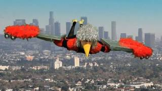 Birdplane | Music Videos | The Axis Of Awesome