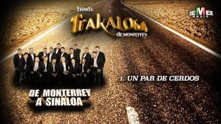 Un Par de Cerdos - La Trakalosa de Monterrey (Audio Oficial)
