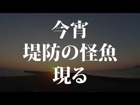 【ショアジギング】堤防モンスター予告編