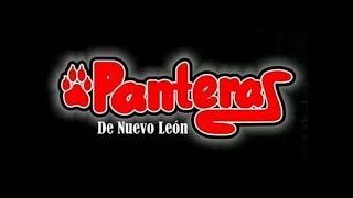 Panteras de Nuevo León - El contador