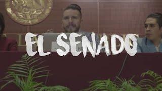 La Vida Se Lee Con Los Pies: El Senado ( Daniel Habif )