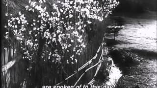 Nubi di osaka - video promo 04