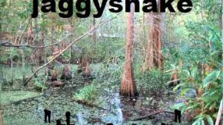 swamp rap.mp4