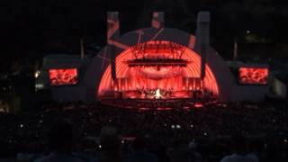 Seu Jorge 'The Life Aquatic' David Bowie Tribute with the Hollywood Bowl Orchestra 6/25/17 - Starman