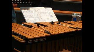 America (West Side Story, Leonard Bernstein) Percussion Vibraphone, Syntheway Strings VST Plugins