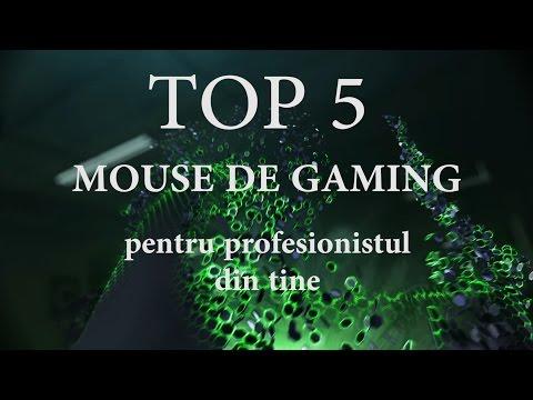 TOP 5 Mouse de gaming pentru profesionistul din tine