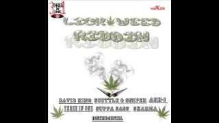 Lick weed Riddim Instrumental - January 2015