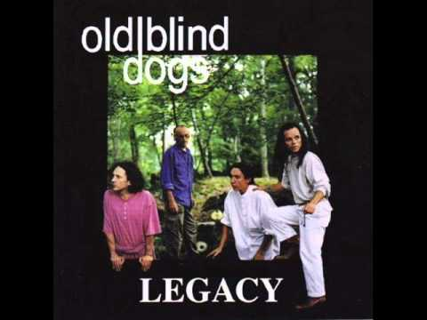 old-blind-dogs-the-rose-and-the-lindsey-o-mymoppet52