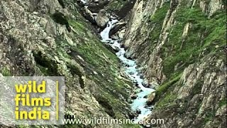 Stream flowing from the mountains - Amarnath yatra
