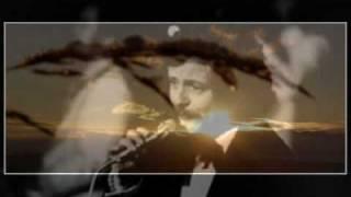 Petr Spálený - Dáma při těle